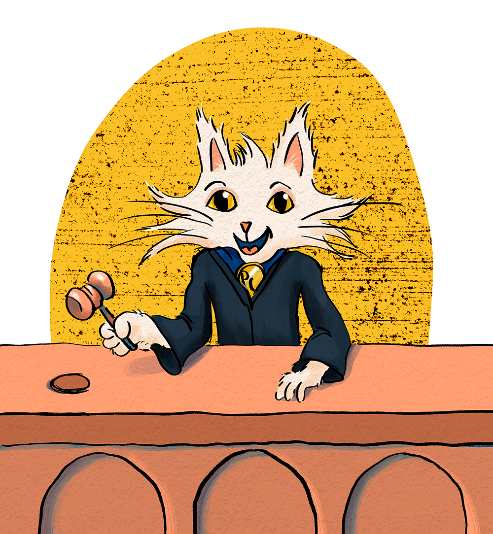First Principles - Process Cat
